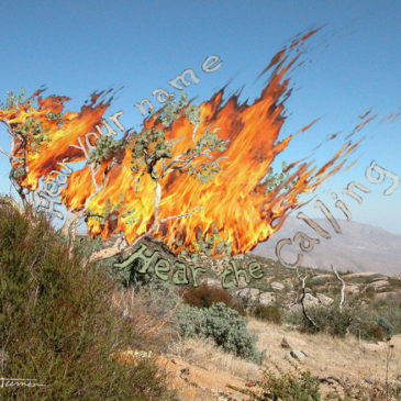 The Burning Bush Revisited